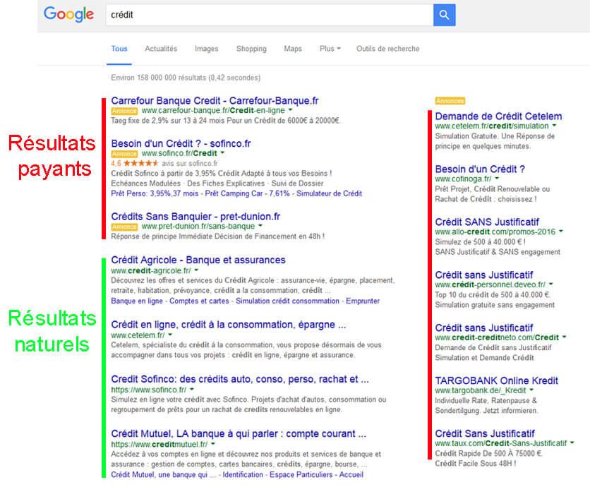 résultats naturels et payants sur Google